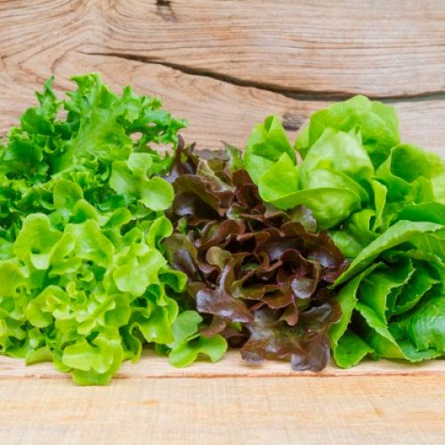 salada-fresca